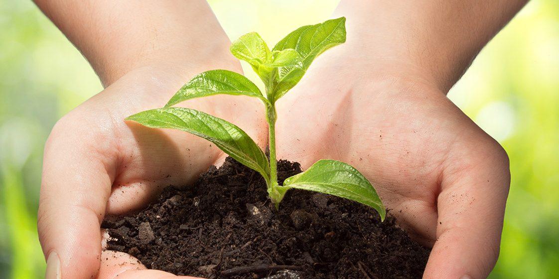 154cee4eda Acli Piemonte: il lavoro che cambia l'agricoltura - Acli